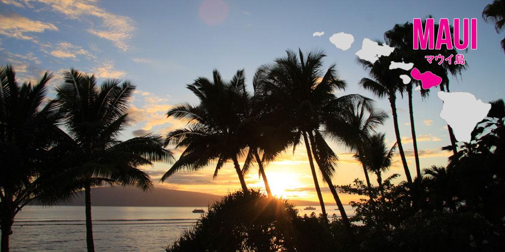 ハワイ諸島5+2大マラソン :: マ...